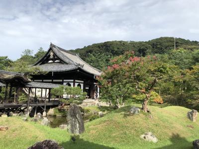Go To 京都② 建仁寺 高台寺 圓徳院 壱銭洋食