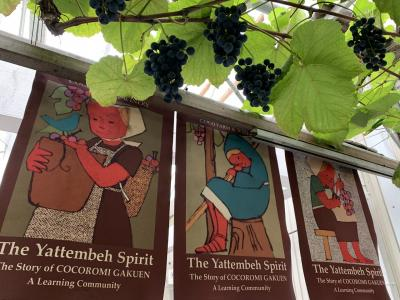 ココファームワイナリーへ     ワイン造りの原点を見に行く