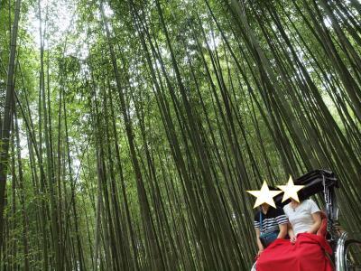 初秋の京都旅No.1 のんびり嵐山散歩 初めての人力車 鯛匠 HANANA でおいしい鯛茶漬け
