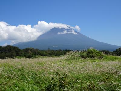 富士山見たいけど、ウチはGO TOキャンペーンは利用できないので、意地でも日帰り。
