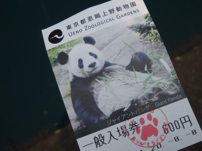新パンダ舎「パンダのもり」オープン☆上野動物園 2020年8月8日&9月12日の記録
