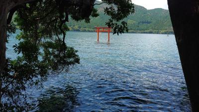 GOTOトラベルでぶらり箱根旅①~健康祈願でパワースポット神社へ~