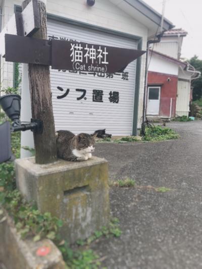 初の宮城県と猫の島~3日目~