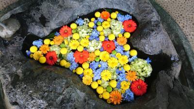 花手水めぐり 豊平