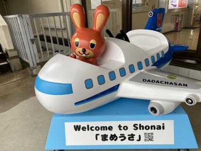 【ANA】飛行機旅!名古屋・新潟・山形の旅③