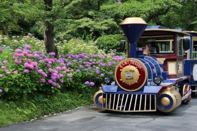 紫と青の花々に囲まれて はままつフラワーパーク【2020夏の訪問記】その2