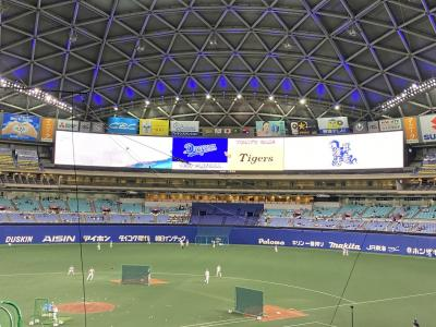 生ビールと味噌とんちゃん(豚ホルモン)でナゴヤドーム新しい野球観戦方式阪神戦