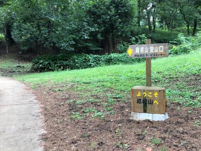 或る夏の日の箱根山登山