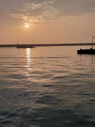 愛媛(伊予一国)ドライブ巡礼(69)夜明けの今治港。