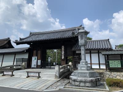 妙心寺で明智風呂&仏殿特別拝観と座禅体験ツアーに参加してみた