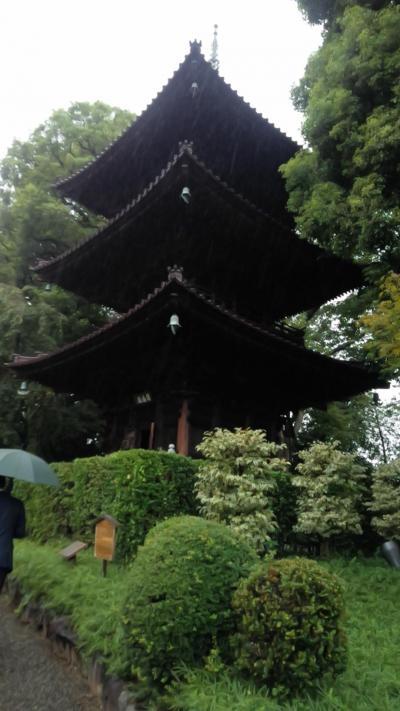 初めての両家顔合わせ♥②ーホテル椿山荘・日本庭園散策ー