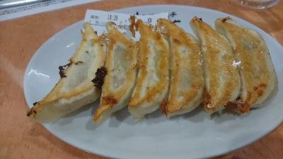 日光へ行く前に宇都宮で餃子をたらふく食べた旅行記