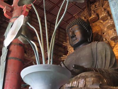 古都の紅葉(2) ☆ 奈良公園と東大寺