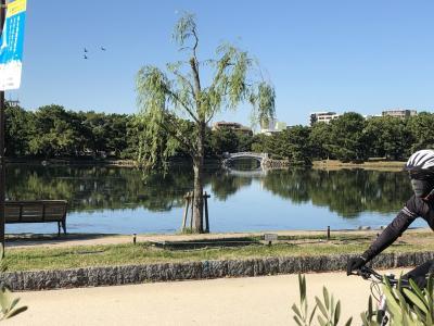 【日本海の旅】鳥取→島根→山口→福岡 西日本縦断⑭(5日目最終回)博多散策