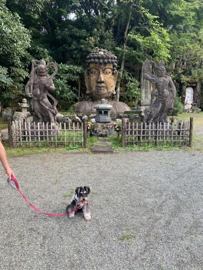 詩との旅8泊目☆コレドール湯河原Dog&Resortへ