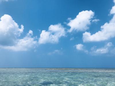 気分転換の旅~沖縄