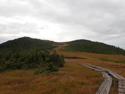 尾瀬燧ヶ岳:高層湿原の紅葉