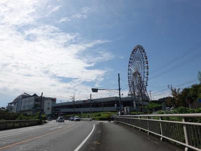 自転車でGO!早朝バージョン =彼岸花を見に興徳寺へ(3/3 復路)= 2020.09.22