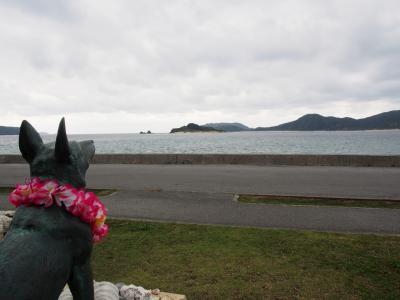 座間味・阿嘉島を巡る旅①