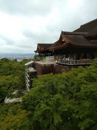 2020年9月・サクッとGoTo京都!~後編・清水寺から祇園エリアを散策&和なティータイム~