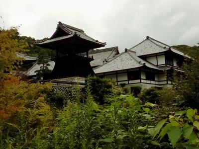 奥山方広寺を訪れました