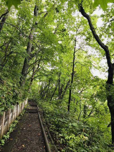 気分転換の旅~北海道