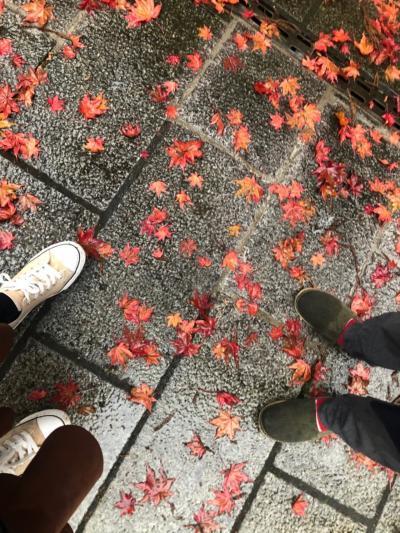 2019年11月 雨の栃木ドライブ