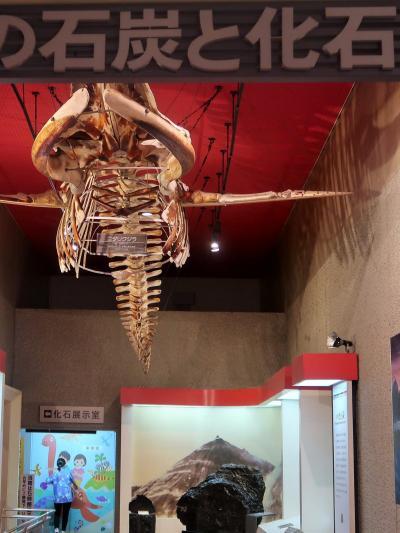 いわき-3 常磐湯本 いわき市石炭・化石館 見学 ☆ほるる-常磐炭鉱/恐竜化石発掘の歴史