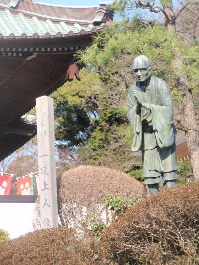神奈川県散策:藤沢市内と、たぶろう湘南支部美術展紹介