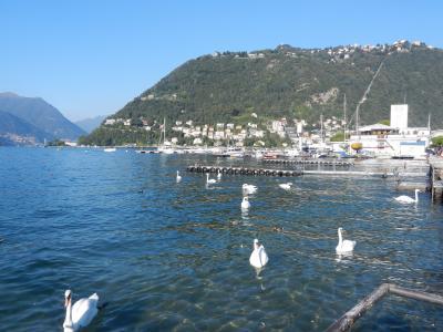 2020年9月 イタリア旅行2 二泊目はイタリアの端っこ、コモ Como