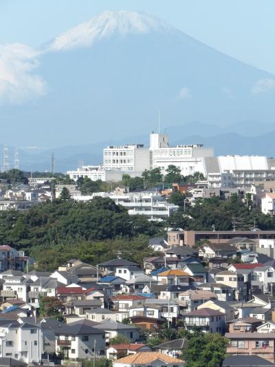 上大岡駅近くから見る初冠雪した富士山