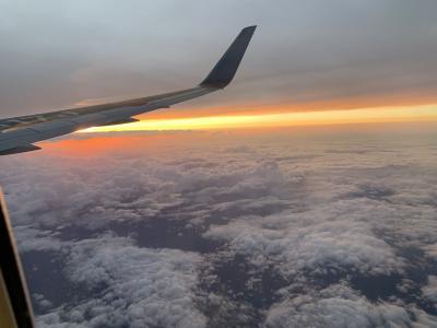 JAL 空たび 星空フライト