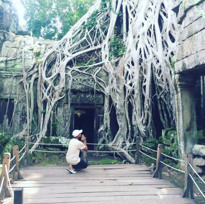 アンコールワット遺跡群の世界遺産のうち、タプローム寺院の雨季の観光を案内いたします。