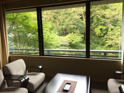 金沢・加賀・能登ぐるりんパスでGO!~山中温泉 花紫(はなむらさき)のアラカルト懐石