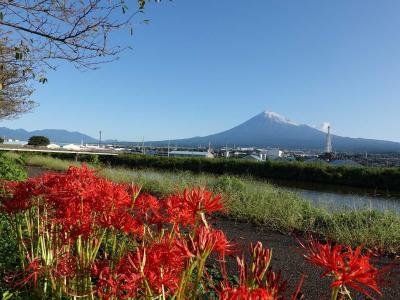 散歩 =初冠雪の富士山を見ながら…= 2020.09.28