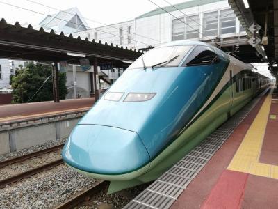 2020夏 北海道&東日本パスで東日本をひとまわり vol.3「新潟から仙台編(海里・とれいゆつばさ・いも煮・バスセンターのカレー)」