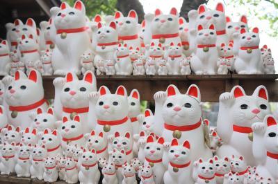 招き猫に包まれる 世田谷豪徳寺