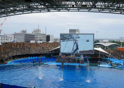 Go Toトラベル~甥っ子たちと名古屋へ 名古屋観光ホテル、名古屋港水族館(3)