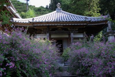 萩の寺、最明寺へ