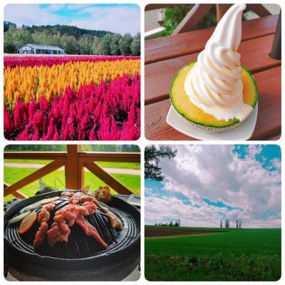 2泊3日JALどこかにマイルで帯広@レンタカーで富良野・美瑛と温泉の旅