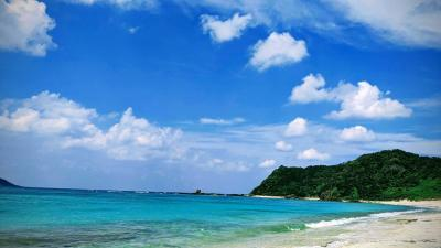 のどかな奄美大島