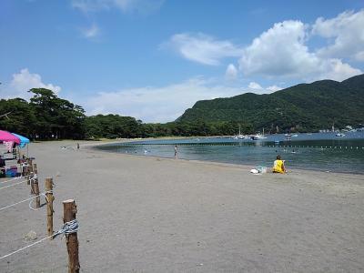 下手な釣りに飽きて、戸田の歴史と深海魚の散歩・戸田湾