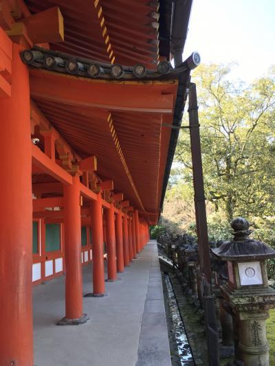 緊急事態宣言前の3月。1泊2日一人旅の奈良3:早朝の春日大社と水谷神社
