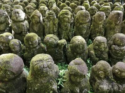 京都2泊3日 歩き回りの旅 2020年9月