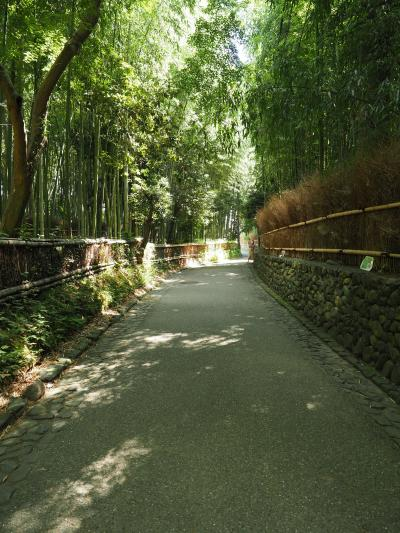 京都 - AUG20