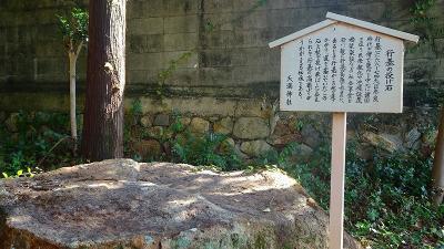 宝塚市の田畑の畦道等に咲く彼岸花を探して その3。
