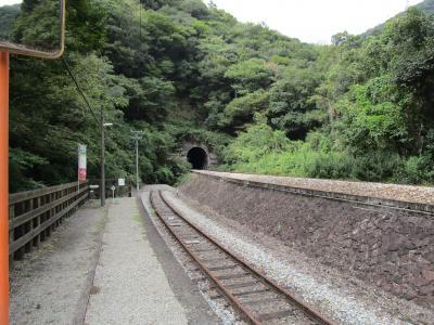 乗り鉄の自由研究 「海の見える映える駅」と「秘境駅のトンネル」