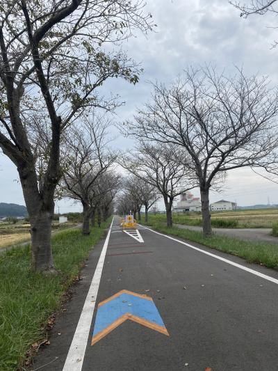 つくば霞ヶ浦りんりんロード~旧筑波鉄道コース