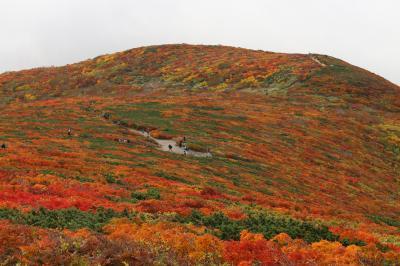 ブララブコー「紅葉シーズン到来!これが噂の神の絨毯☆栗駒山」