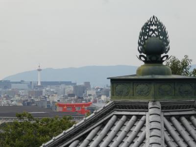 「今なら空いてるかも」の呪縛?・・・・気がつけば5週連続の週末京都詣